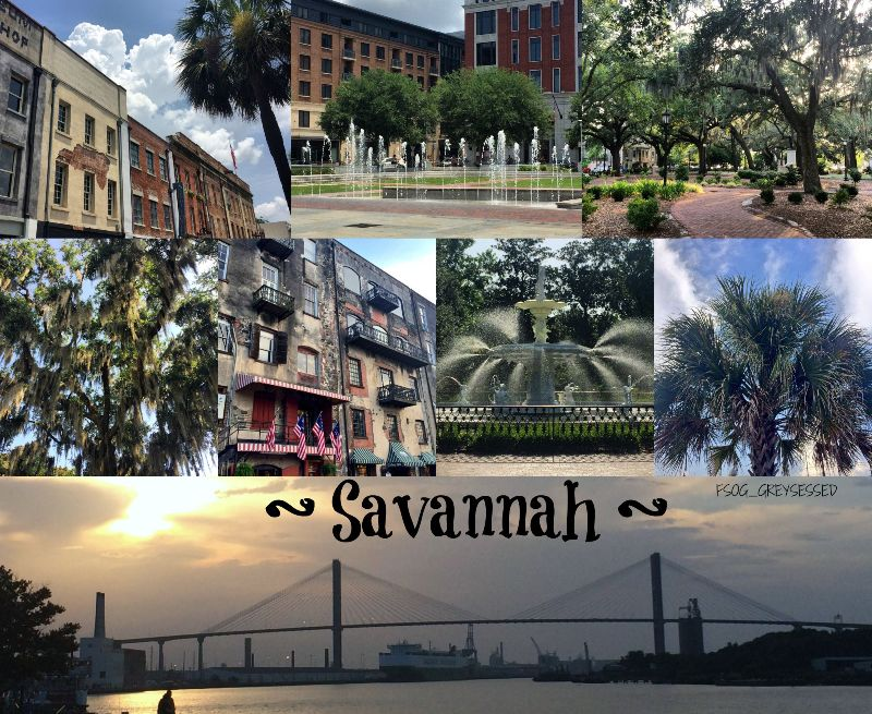 Savannah_CollageTag